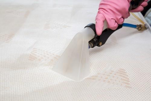 steam-clean