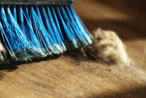 Can Dirty Mattress Make You Sick?