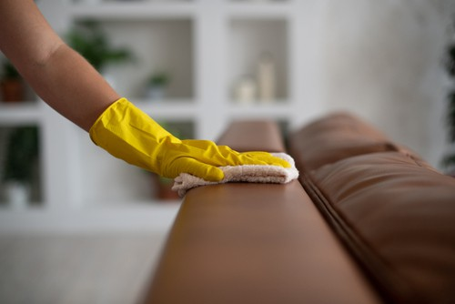 How Much Bacteria Is There On A Couch? - Conclusion